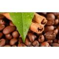 供应原产地苏门答腊黄金曼特宁咖啡豆