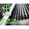 汉中地下室蓄排水板~~屋顶种植塑料排水板*畅销国内