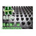 铜仁/阻根刺排水板/复合排水板/塑料疏水板/