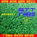 人造草坪 园林绿化草坪 工程草坪绿化假草皮 广州人造草坪