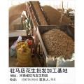 花生米厂家15937619161