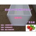A型架式草莓栽培槽草莓立体种植槽