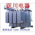 眉山定做特殊型號的油浸式高壓變壓器139*0817*7207