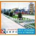 南京PVC草坪护栏 PVC塑钢花坛隔离栏 龙桥护栏厂直销