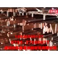 c1100紫铜条、c1100紫铜条厂家销售