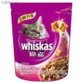 宁波进口宠物食品需要多少钱