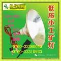 綠鳥照明玉溪12V 12V-85V低壓夜市7W工礦燈