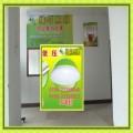 绿鸟照明大庆3W5W红白球泡
