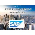 重庆SAP条码系统 SAP条码软件 重庆达策SAP实施厂商