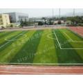东营足球场人造草坪,人工草坪