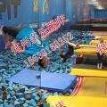 多乐DL-DT-407超大型反弹蹦床体操反弹蹦床组合主题公园