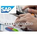 SAP外包服務 SAP售后服務外包 首推重慶達策