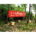 神農蜂語2017年中華蜜蜂養殖培訓昨日在官山鎮開展