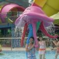 大型水上游乐设备戏水小品儿童水上乐园设备喷水水母水上娱乐设备