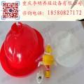 普拉松飲水器 養殖設備 普拉松雞用自動飲水器 自動飲水器