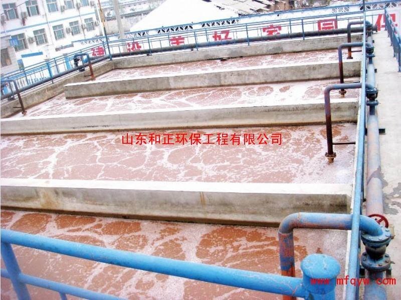 地瓜淀粉污水处理/污水处理公司/养殖场污水处理
