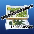 蔬菜保鲜箱<邯郸东泉包装>保鲜效果看得见!