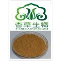 肉苁蓉多肽 宁夏厂家包邮 肉苁蓉肽98% 肉苁蓉提取物