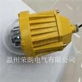 造纸厂GC9260-55WLED防爆灯
