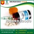 品牌连锁海参牡蛎肽压片糖果OEM委托生产