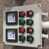 LBZ-A2D2B1K1防爆现场操作柱箱