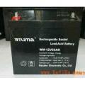 威马蓄电池WM-12V55H产品参数