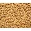 诚意求购小麦碎米糯米木薯淀粉玉米小麦