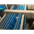 东莞锦鲤毛刷 过滤毛刷 鱼池毛刷过滤效果图片 水族器材批发