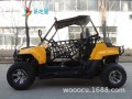 大型ATV观光车汽油卡丁车越野卡丁车雪地履带式摩托车 (1)