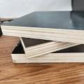 批发工地模板水泥模板建筑覆模板