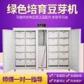 循环生产豆芽机 江西商用大型10盒豆芽机 盛隆机械豆芽机