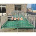 养猪设备小猪保育床复合电热板开关猪床厂家