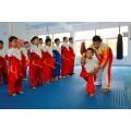 苏州搏击者少年幼儿少儿武术培训班体验课火热招生中