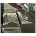 漂盘育苗播种机  泡沫穴育苗播种机--常州风雷精机