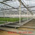 熱銷多層結構苗床 溫室多層養殖苗床網 可提高利用率