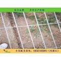 漢明銷售各種育苗網 洛陽熱鍍鋅網片  規格齊全現貨供應