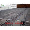 圓臺熱鍍鋅苗床網片  供應溫室苗床網保證上鋅量