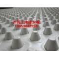 许昌2公分工地排水版3公分工地排水板4公分工地排水板