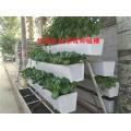 甘肅草莓立體種植槽,無土栽培架,超長使用壽命