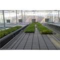 江蘇常熟潮汐式灌溉系統設計與應用