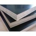 厂家直供木质建筑模板全整芯星冠木业