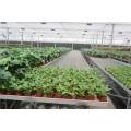 温室育苗床/移动苗床安装信息