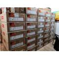 重庆金牌联想服务器SR550 3104现货销售中