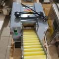 速冻饺子皮机器生产