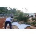 草石隔根板施工技术,草石隔根板施工作用
