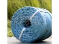 泉翔蓝绳 (10)