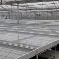 移动潮汐灌溉苗床 节水高效适合养花种植