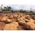 三原小型黄蜡石 三原吨位石 三原鹅卵石