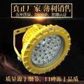 BLD220LED节能灯 LED防爆灯30W