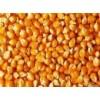 大量求购玉米高粱豆粕鱼粉大麦次粉